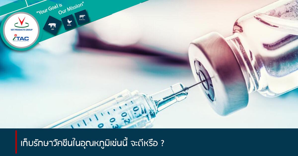 เก็บรักษาวัคซีนในอุณหภูมิเช่นนี้ จะดีหรือ?